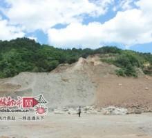 河北平山30年飞播林毁于疯狂盗采