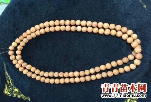 10-素珠长串