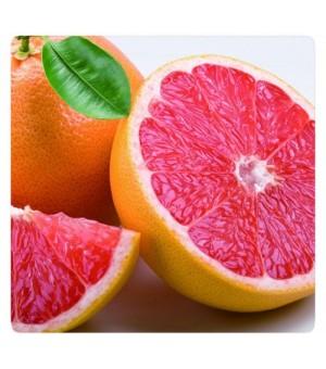 血橙种植技术血橙苗产地